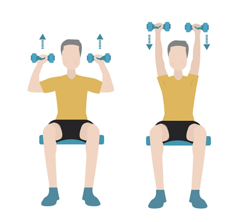 seated shoulder press exercises