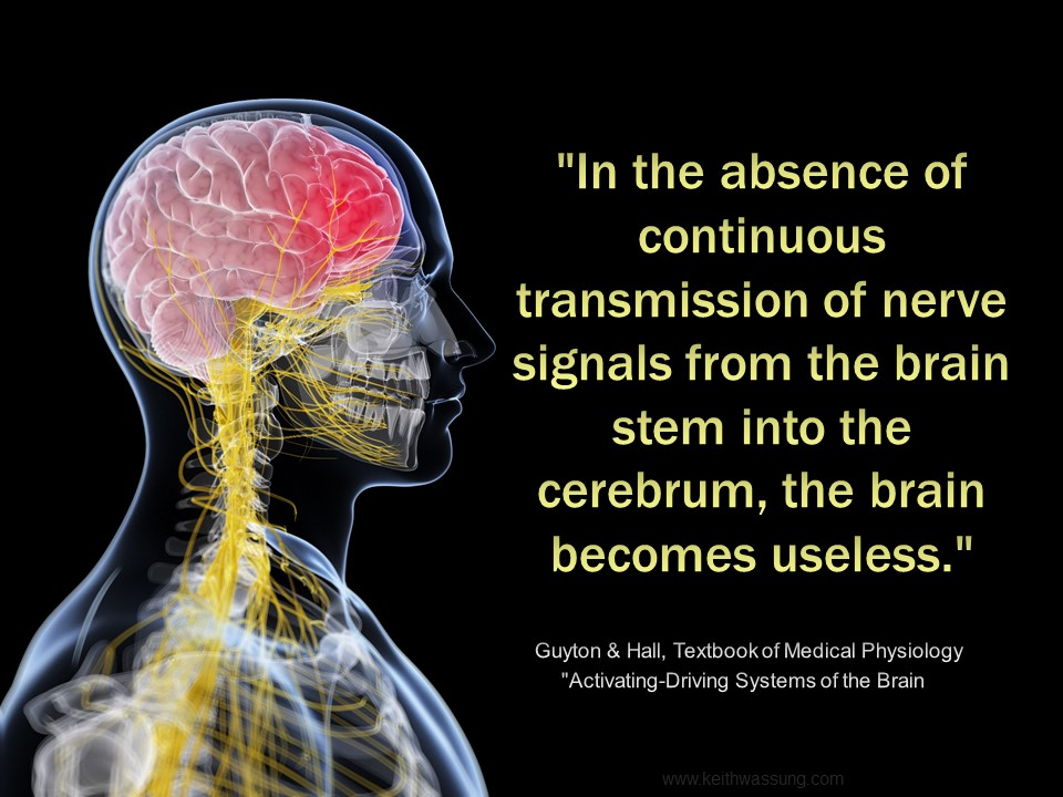 quote saying the importance of nerves signally properly